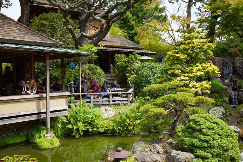 Oldest Japanese Tea Garden in the United States | Megan in a Moment